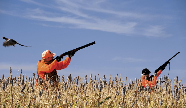 Hunting begins