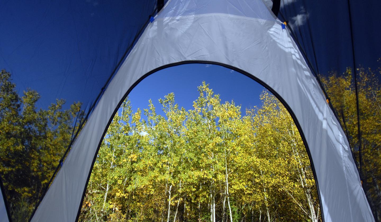 Black Hills camping