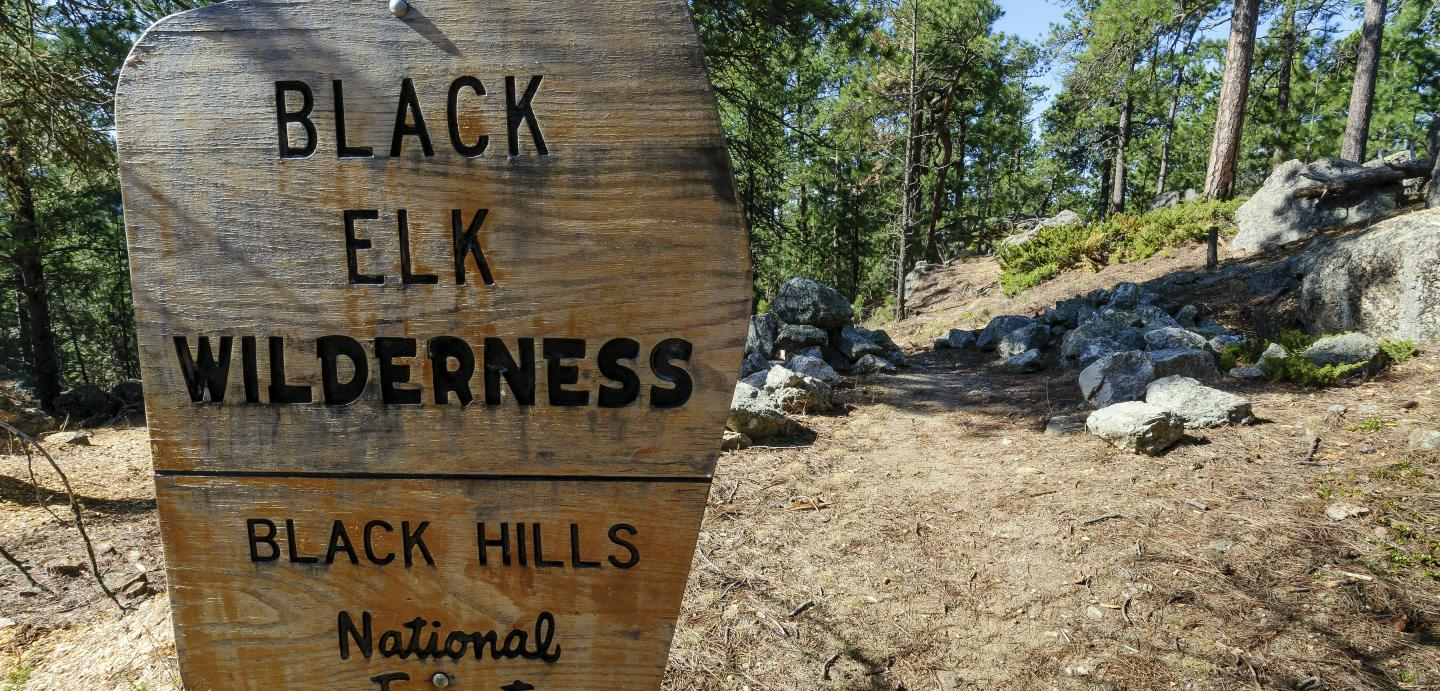 Black Elk Wilderness, Black Hills