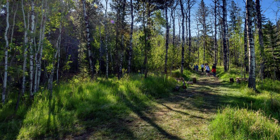 Hiking, Black Hills