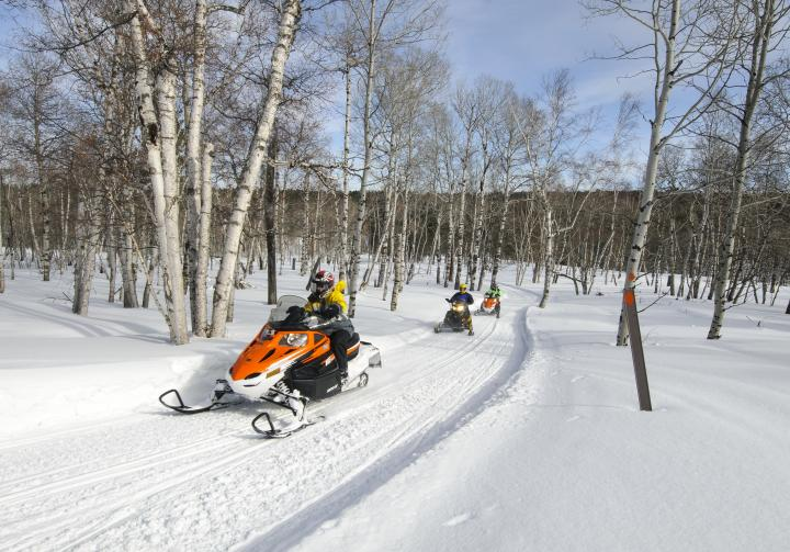 Black Hills National Forest | Spring 2019 Trail Conditions ...  |Black Hills Trail Reports